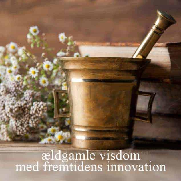 Videnskab - ældgamle visdom med fremtidens innovation